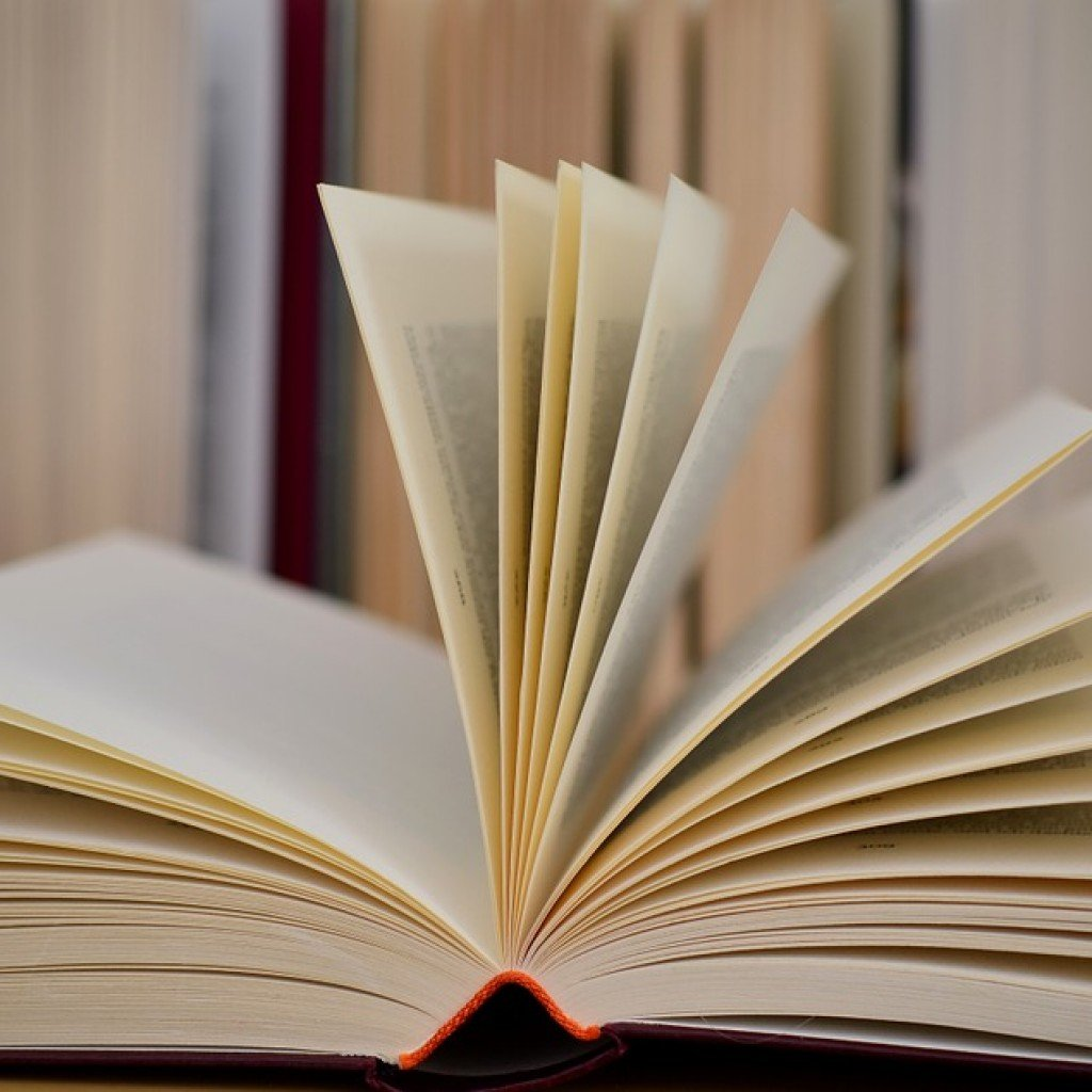 Leggi la nostra guida sul sistema scolastico maltese.